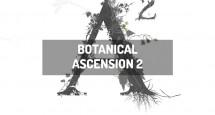 Botanical Ascension 2