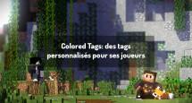 Colored Tags: des tags personnalisés pour ses joueurs