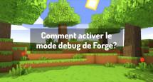Comment activer le mode debug de Forge?