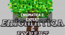 Enigmatica 2: Expert