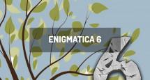 Enigmatica 6