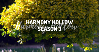 Harmony Hollow Season 3 | modpack minecraft