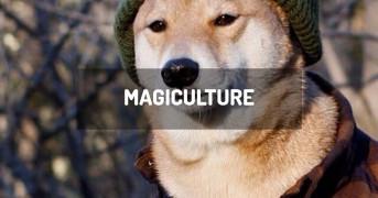 Magiculture | minecraft modpack