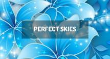 Perfect Skies