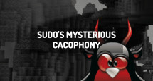 Sudo's Mysterious Cacophony