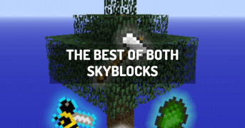 The Best of Both Skyblocks | modpack minecraft