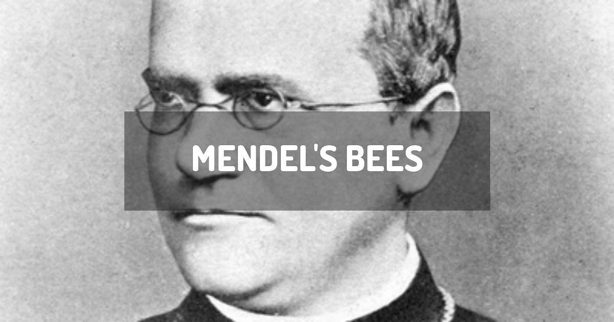 Mendel's Bees