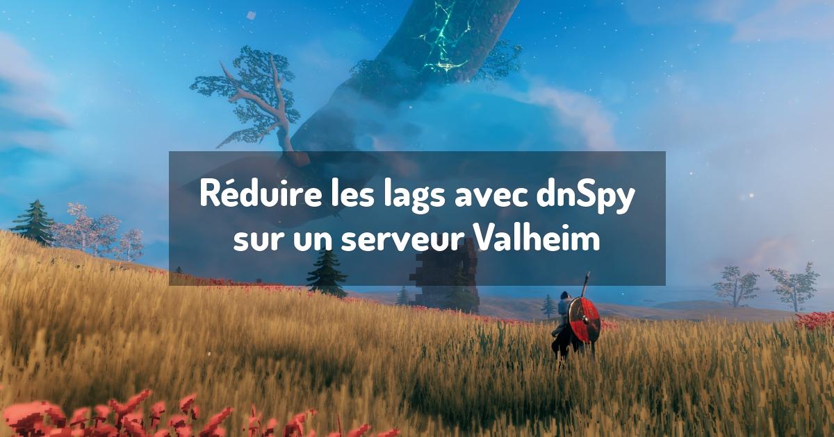 Réduire les lags avec dnSpy sur un serveur Valheim